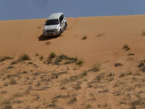 Dune-bashing in a 4x4