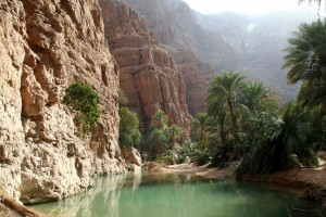 A wadi (natural pool)