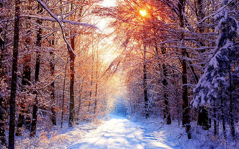 SMALL-nature_winter_sunrise_wallpaper-